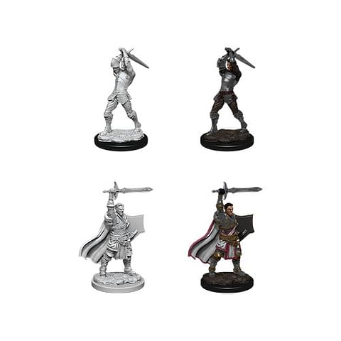 Dungeons & Dragons: Nolzur's Miniatures - Male Human Paladin